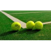 Для тенниса (5)