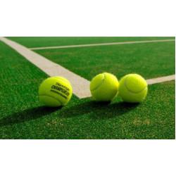 Искусственная трава для тенниса недорого