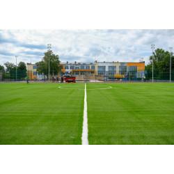 Искусственная трава для школы недорого
