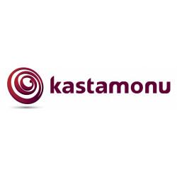 Ламинат Kastamonu